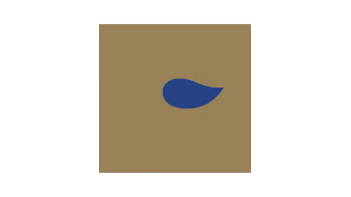 ali-di-pollo-bn