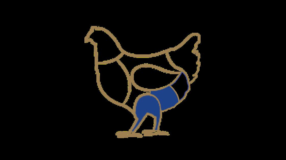 coscia-di-pollo