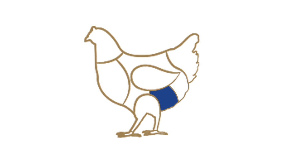 polpa-rollata-di-pollo-bn